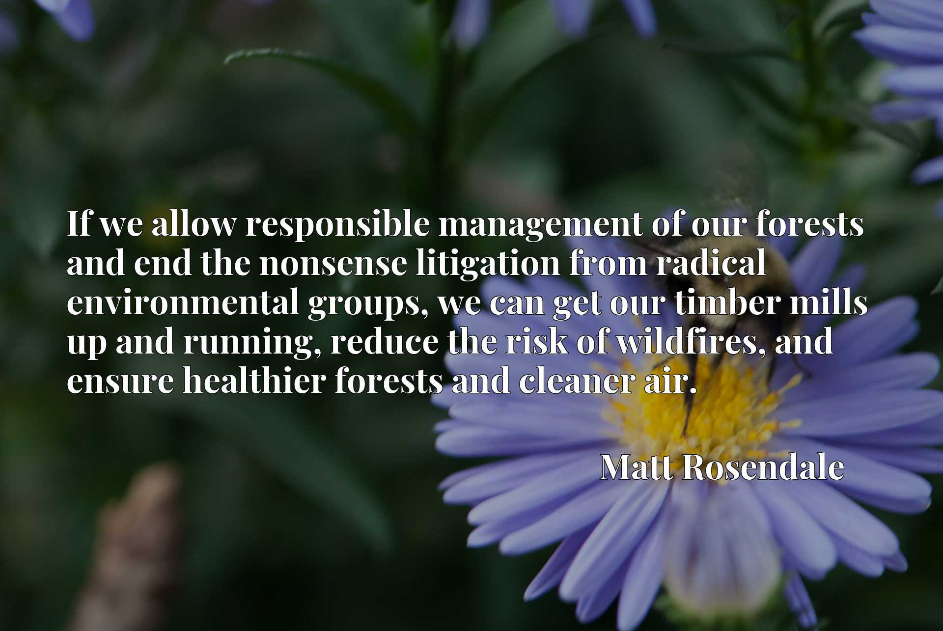 If we allow responsible management of our forests and end the nonsense litigation from radical environmental groups, we can get our timber mills up and running, reduce the risk of wildfires, and ensure healthier forests and cleaner air.