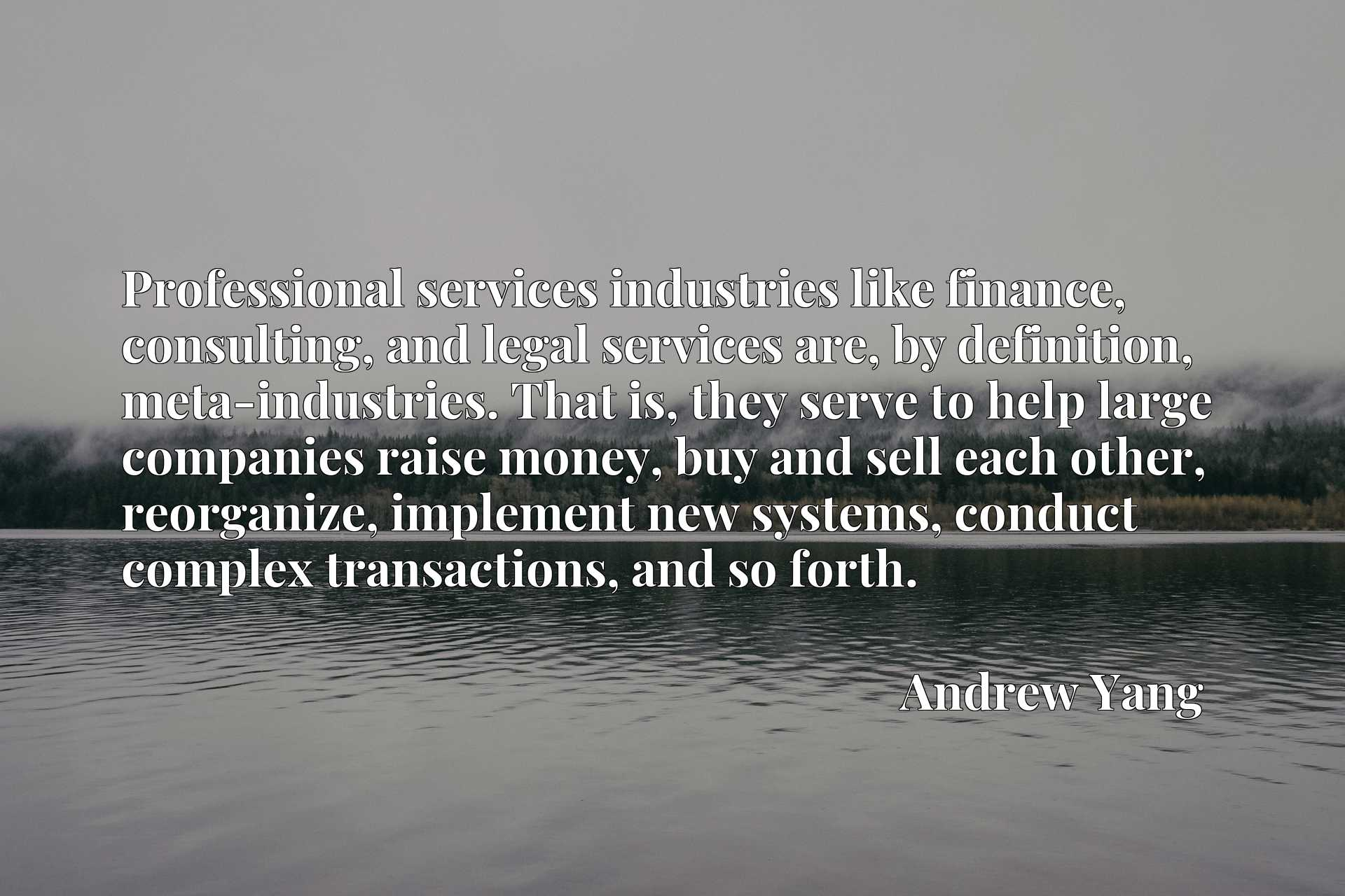 Professional services industries like finance, consulting, and legal services are, by definition, meta-industries. That is, they serve to help large companies raise money, buy and sell each other, reorganize, implement new systems, conduct complex transactions, and so forth.