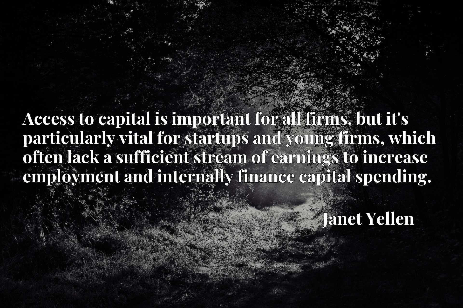 Access to capital is important for all firms, but it's particularly vital for startups and young firms, which often lack a sufficient stream of earnings to increase employment and internally finance capital spending.