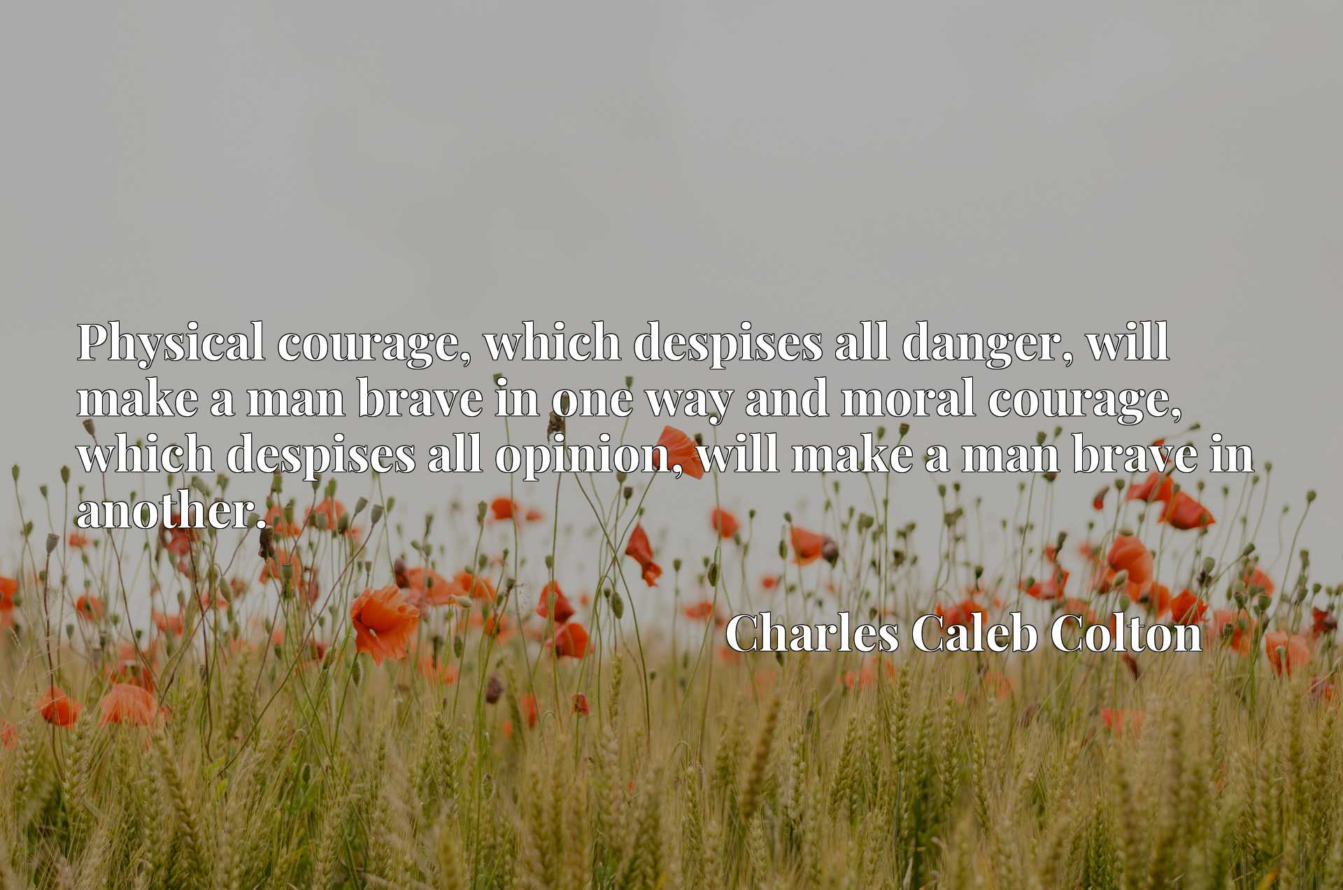 Physical courage, which despises all danger, will make a man brave in one way and moral courage, which despises all opinion, will make a man brave in another.