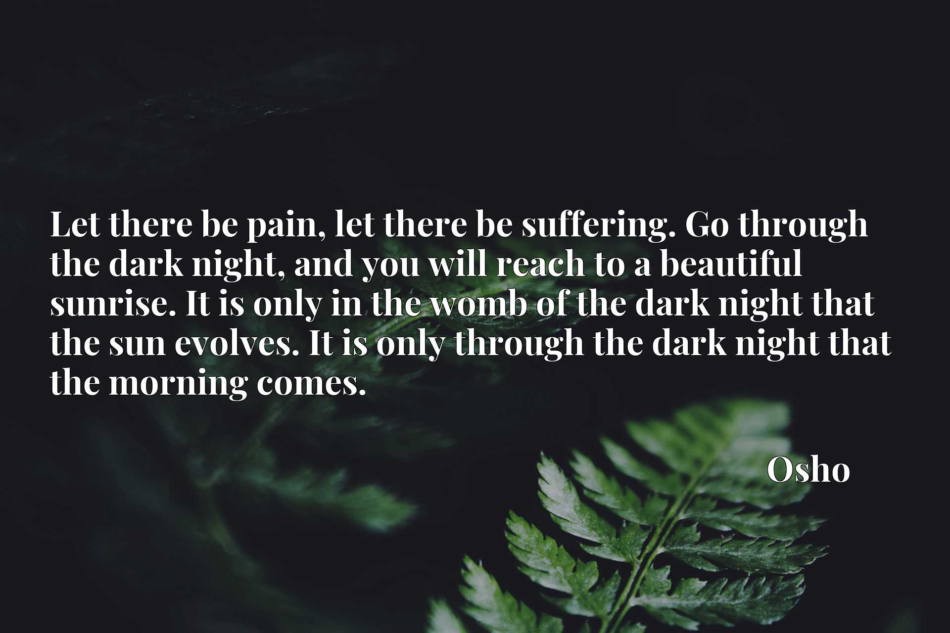 Let there be pain, let there be suffering. Go through the dark night, and you will reach to a beautiful sunrise. It is only in the womb of the dark night that the sun evolves. It is only through the dark night that the morning comes.