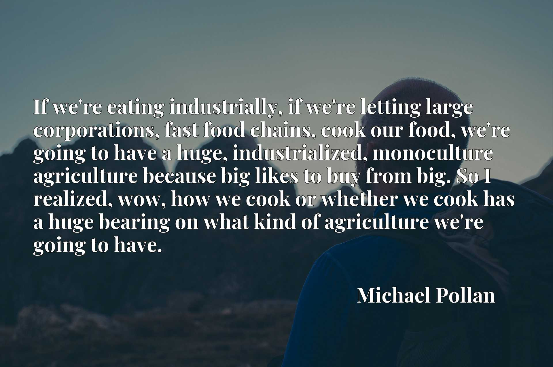 If we're eating industrially, if we're letting large corporations, fast food chains, cook our food, we're going to have a huge, industrialized, monoculture agriculture because big likes to buy from big. So I realized, wow, how we cook or whether we cook has a huge bearing on what kind of agriculture we're going to have.