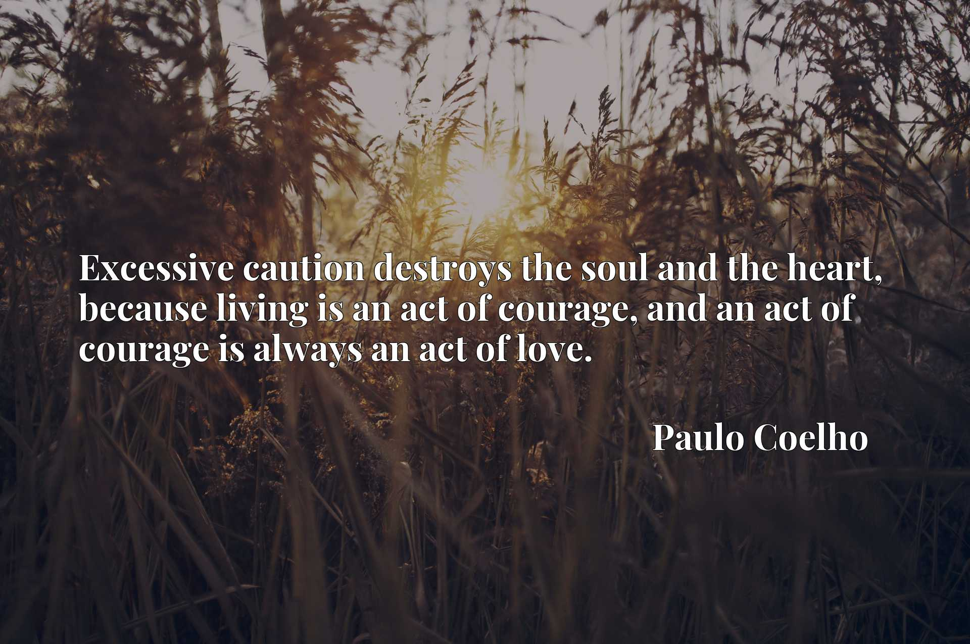 Excessive caution destroys the soul and the heart, because living is an act of courage, and an act of courage is always an act of love.