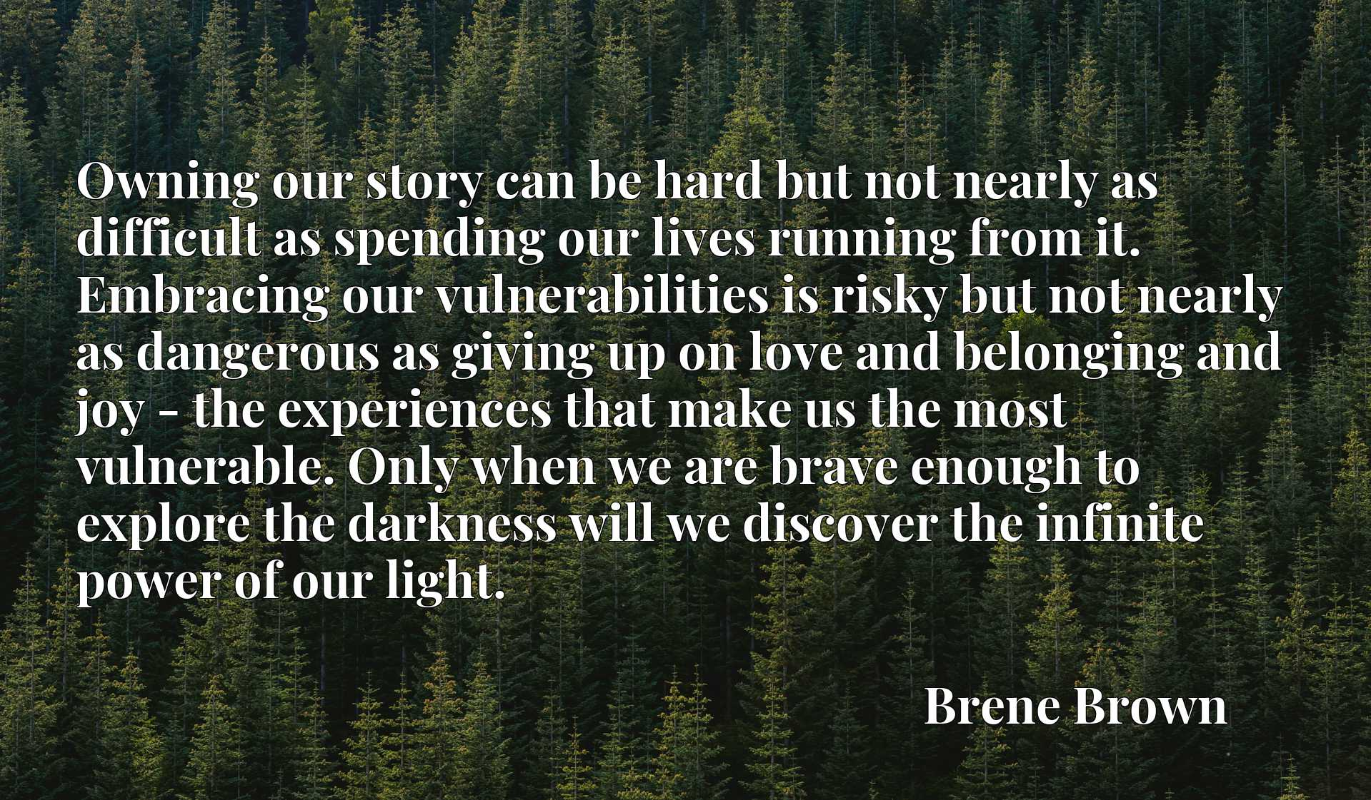 Owning our story can be hard but not nearly as difficult as spending our lives running from it. Embracing our vulnerabilities is risky but not nearly as dangerous as giving up on love and belonging and joy - the experiences that make us the most vulnerable. Only when we are brave enough to explore the darkness will we discover the infinite power of our light.