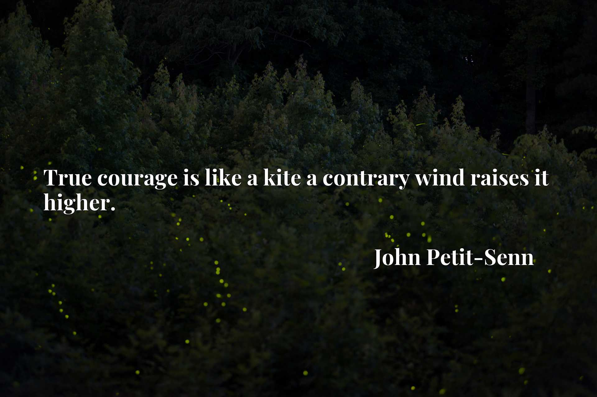 True courage is like a kite a contrary wind raises it higher.