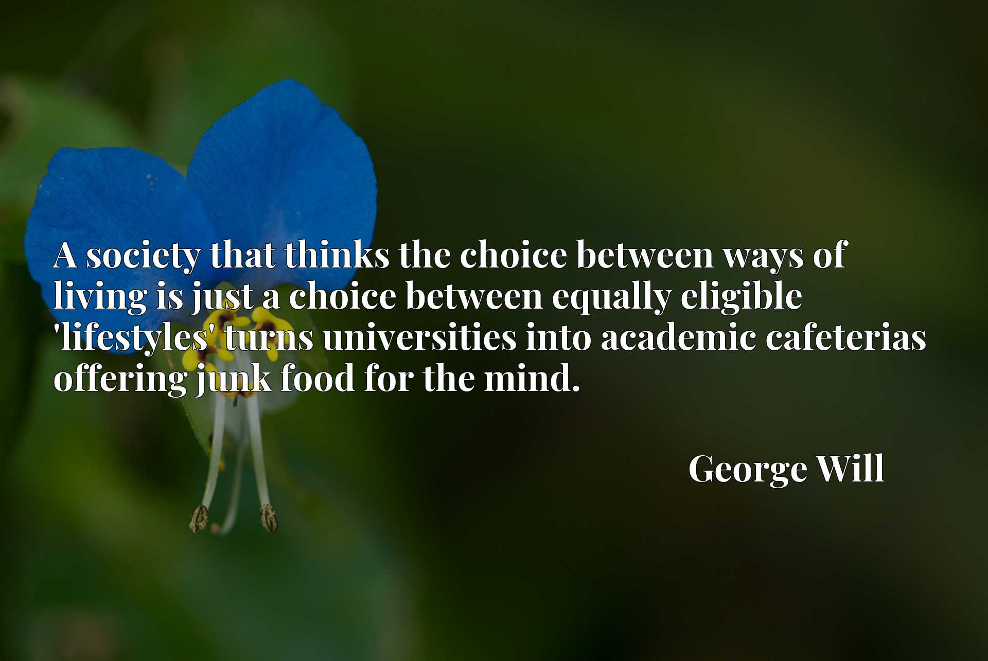 A society that thinks the choice between ways of living is just a choice between equally eligible 'lifestyles' turns universities into academic cafeterias offering junk food for the mind.
