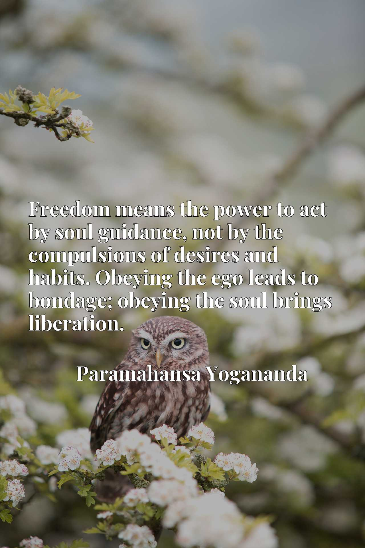 Freedom means the power to act by soul guidance, not by the compulsions of desires and habits. Obeying the ego leads to bondage; obeying the soul brings liberation.