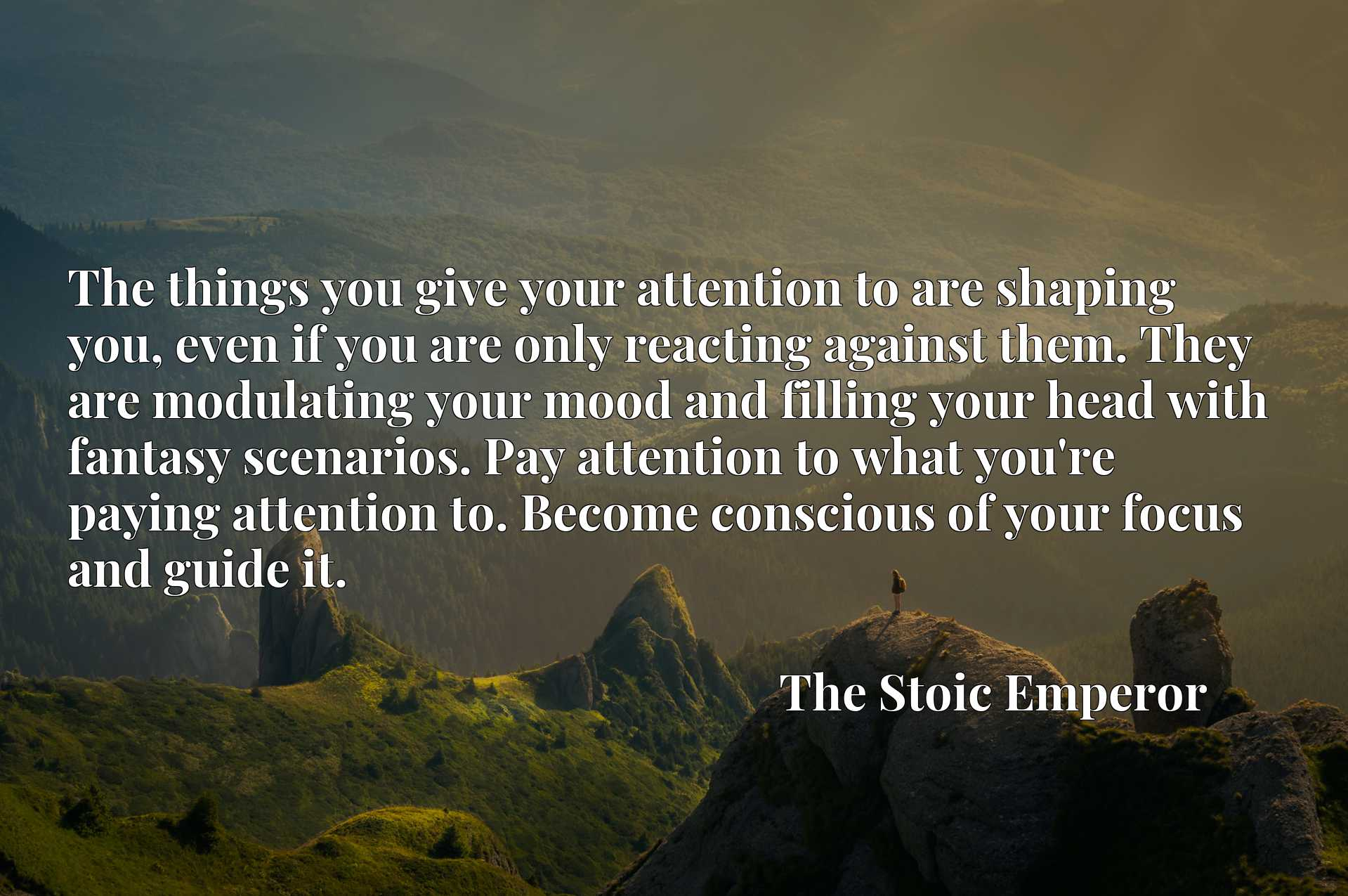The things you give your attention to are shaping you, even if you are only reacting against them. They are modulating your mood and filling your head with fantasy scenarios. Pay attention to what you're paying attention to. Become conscious of your focus and guide it.