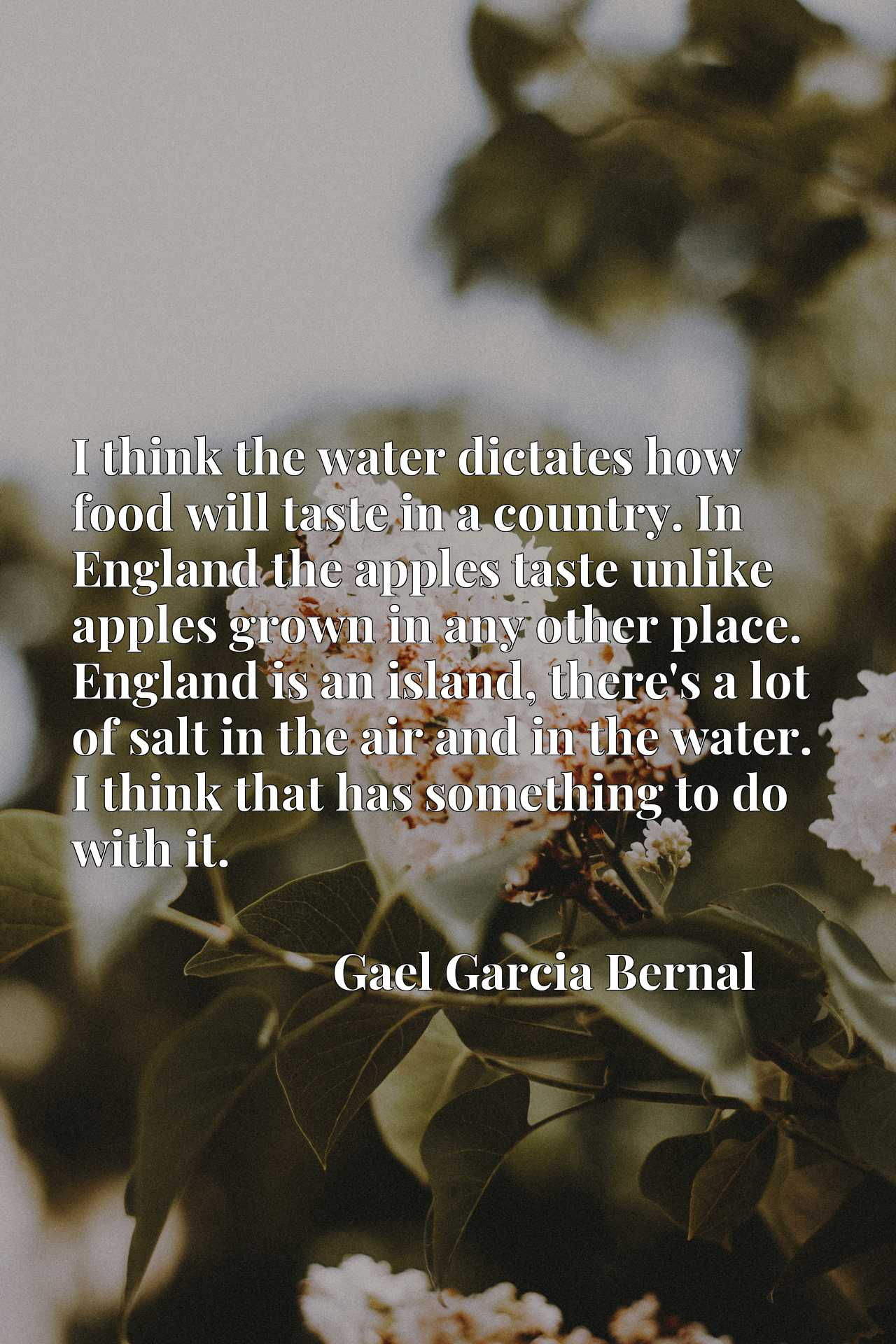 I think the water dictates how food will taste in a country. In England the apples taste unlike apples grown in any other place. England is an island, there's a lot of salt in the air and in the water. I think that has something to do with it.