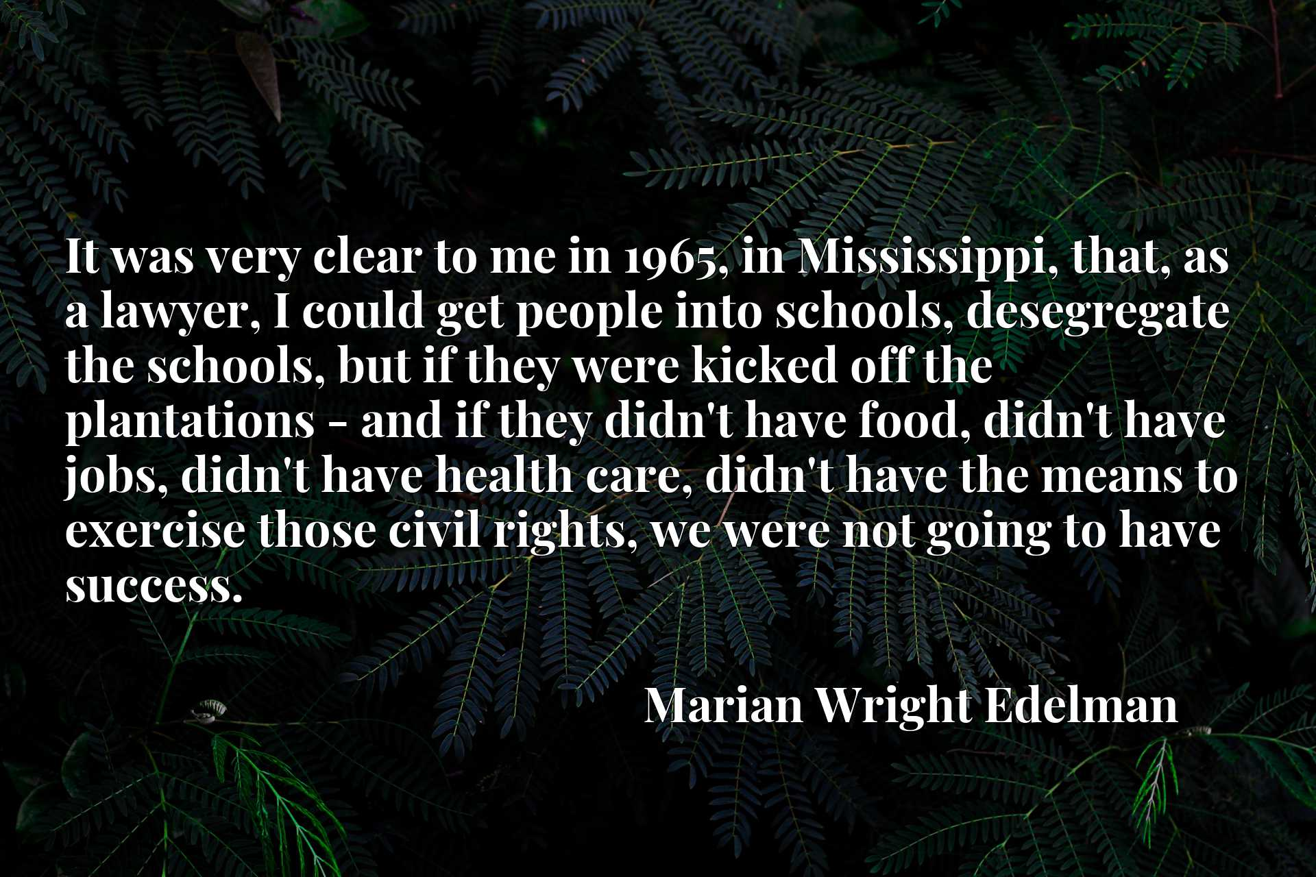 It was very clear to me in 1965, in Mississippi, that, as a lawyer, I could get people into schools, desegregate the schools, but if they were kicked off the plantations - and if they didn't have food, didn't have jobs, didn't have health care, didn't have the means to exercise those civil rights, we were not going to have success.