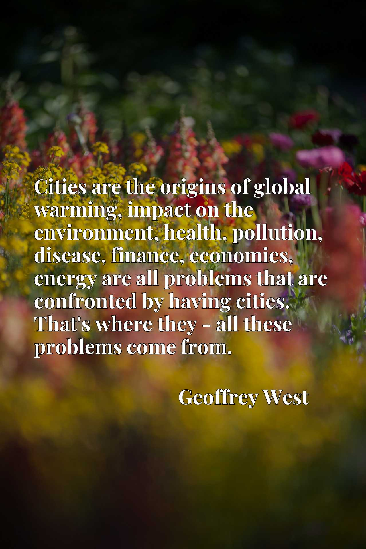 Cities are the origins of global warming, impact on the environment, health, pollution, disease, finance, economies, energy are all problems that are confronted by having cities. That's where they - all these problems come from.