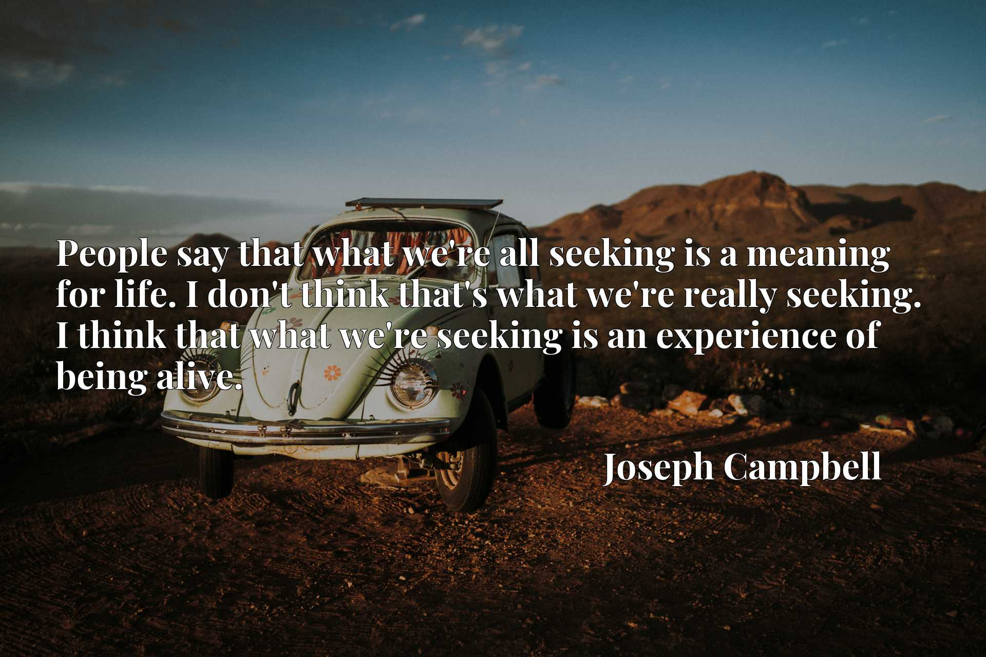 People say that what we're all seeking is a meaning for life. I don't think that's what we're really seeking. I think that what we're seeking is an experience of being alive.