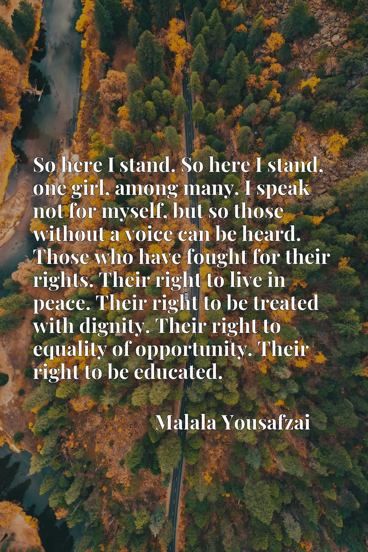 So here I stand. So here I stand, one girl, among many. I speak not for myself, but so those without a voice can be heard. Those who have fought for their rights. Their right to live in peace. Their right to be treated with dignity. Their right to equality of opportunity. Their right to be educated.
