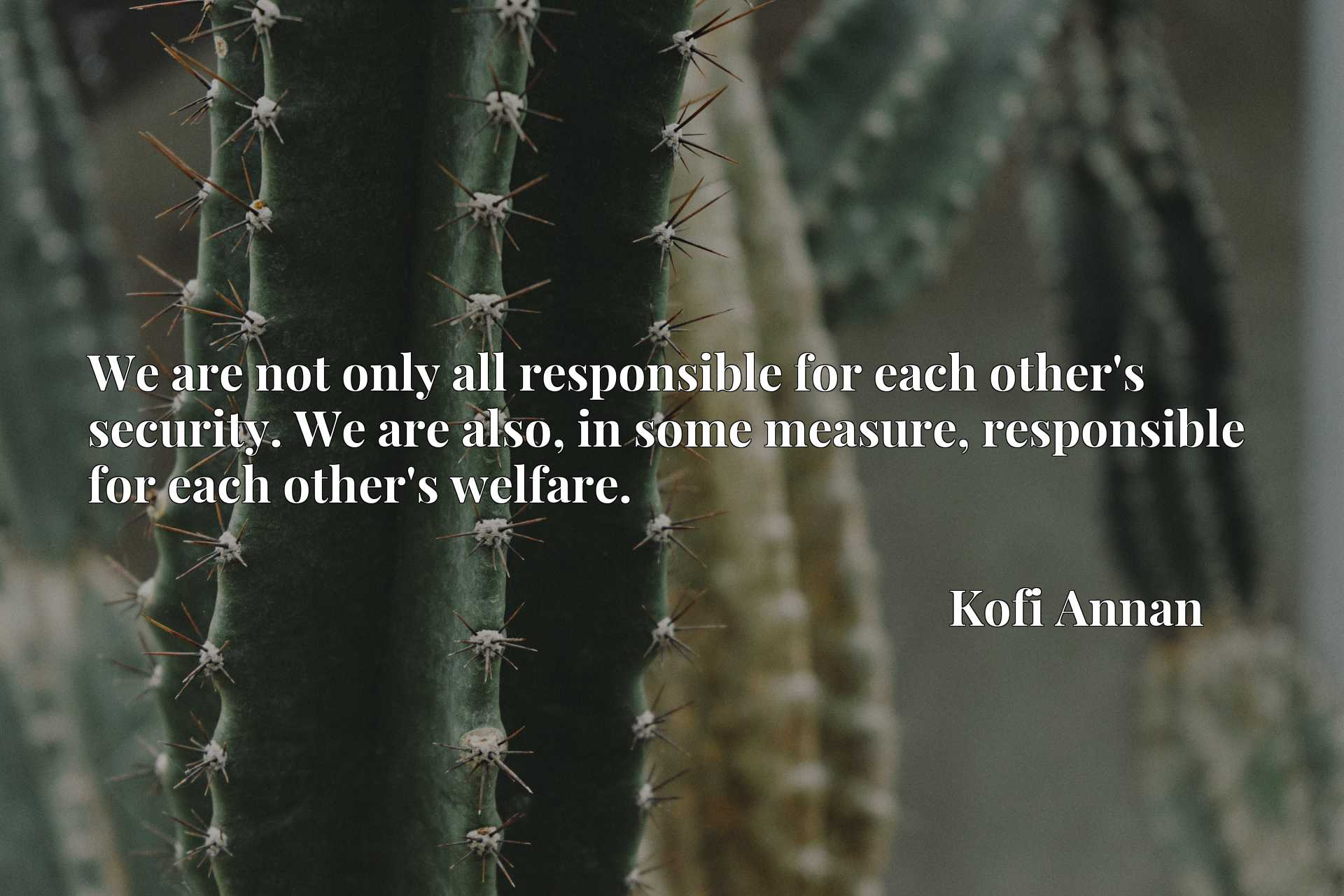 We are not only all responsible for each other's security. We are also, in some measure, responsible for each other's welfare.