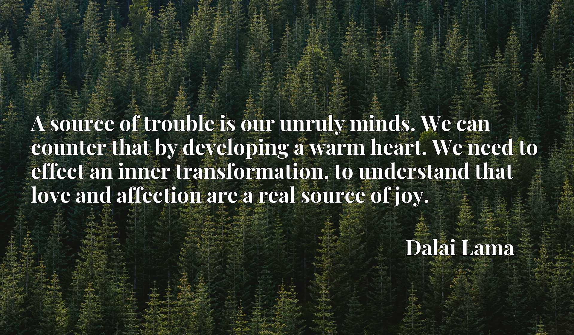 A source of trouble is our unruly minds. We can counter that by developing a warm heart. We need to effect an inner transformation, to understand that love and affection are a real source of joy.