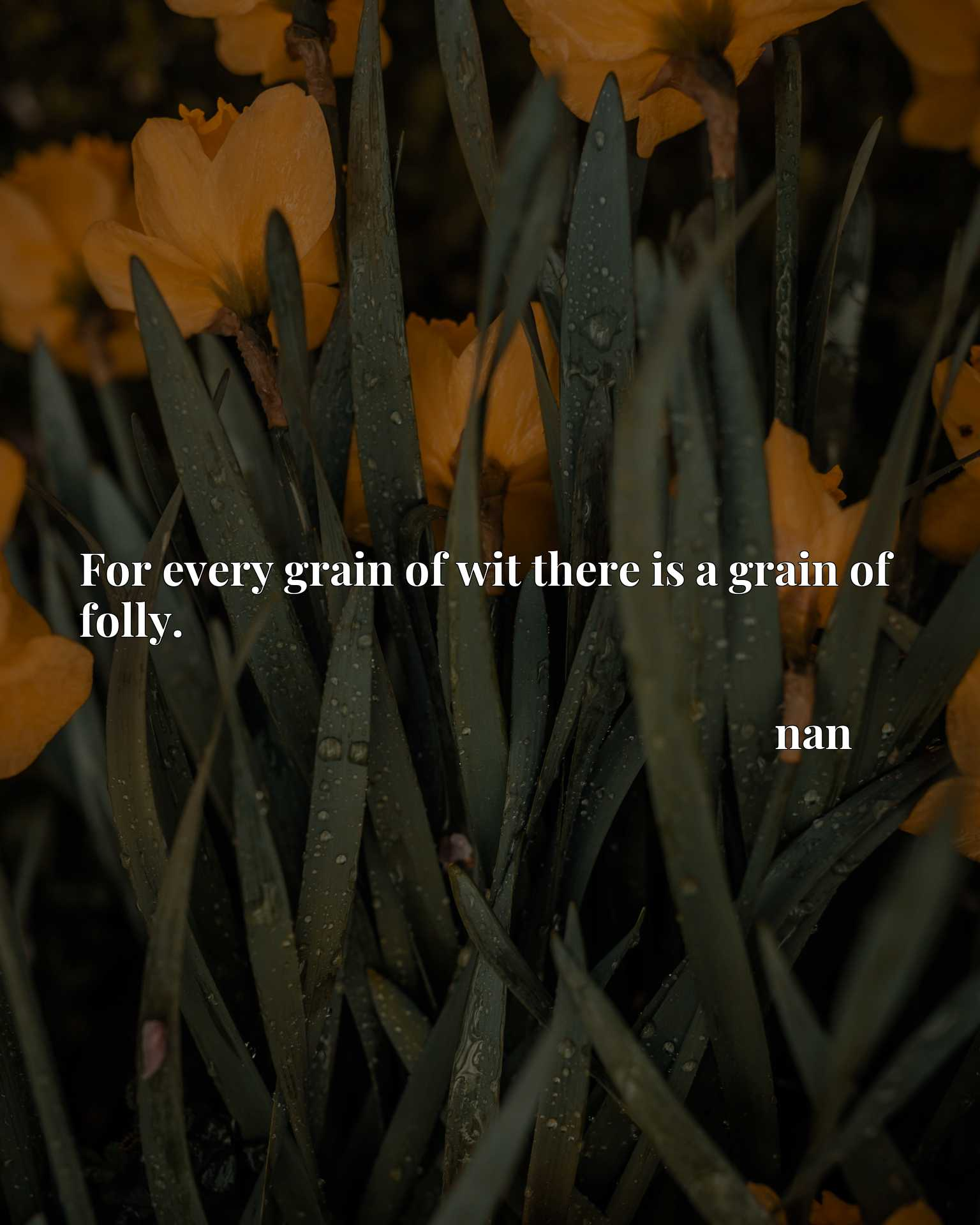 For every grain of wit there is a grain of folly.