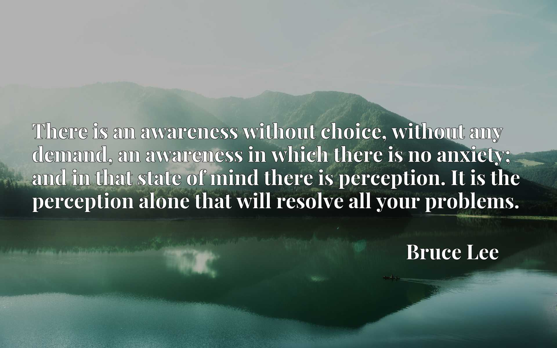 There is an awareness without choice, without any demand, an awareness in which there is no anxiety; and in that state of mind there is perception. It is the perception alone that will resolve all your problems.