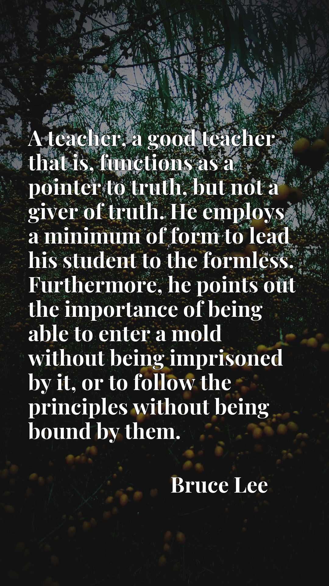 A teacher, a good teacher that is, functions as a pointer to truth, but not a giver of truth. He employs a minimum of form to lead his student to the formless. Furthermore, he points out the importance of being able to enter a mold without being imprisoned by it, or to follow the principles without being bound by them.