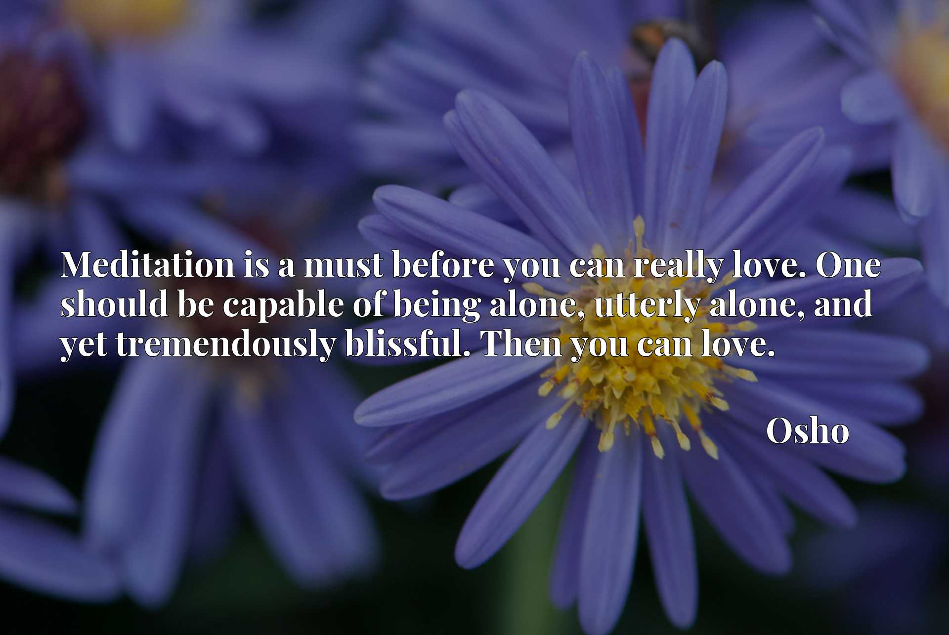 Meditation is a must before you can really love. One should be capable of being alone, utterly alone, and yet tremendously blissful. Then you can love.