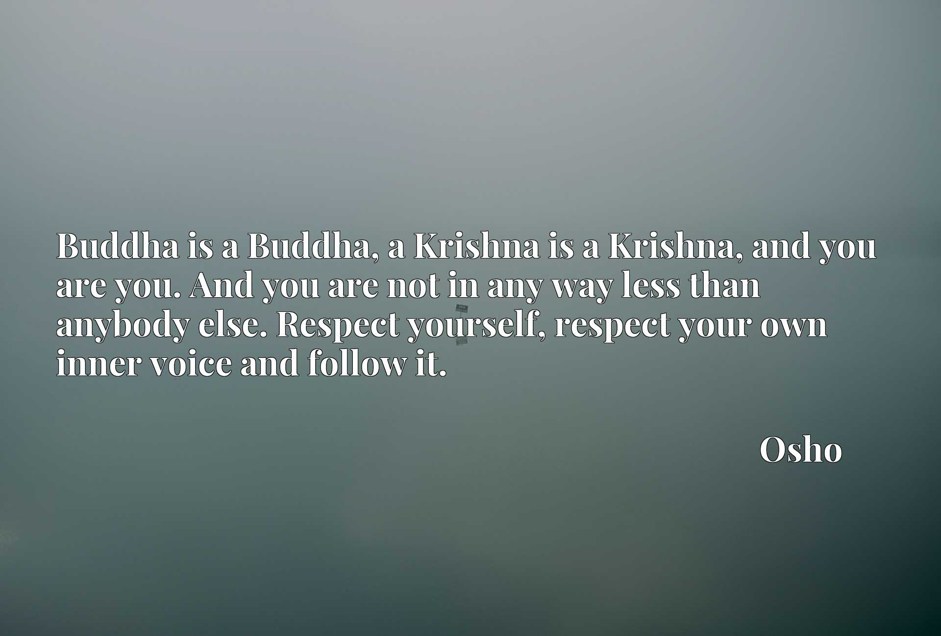 Buddha is a Buddha, a Krishna is a Krishna, and you are you. And you are not in any way less than anybody else. Respect yourself, respect your own inner voice and follow it.