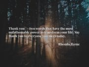 Thank youx9d - two words that have the most unfathomable power to transform your life. Say thank you to everyone you meet today.