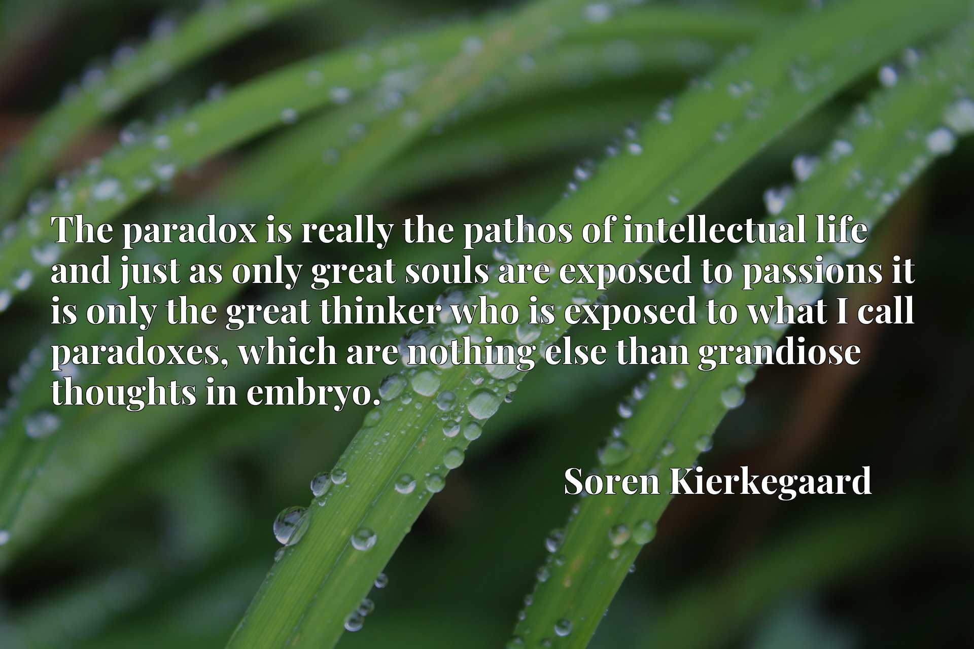The paradox is really the pathos of intellectual life and just as only great souls are exposed to passions it is only the great thinker who is exposed to what I call paradoxes, which are nothing else than grandiose thoughts in embryo.