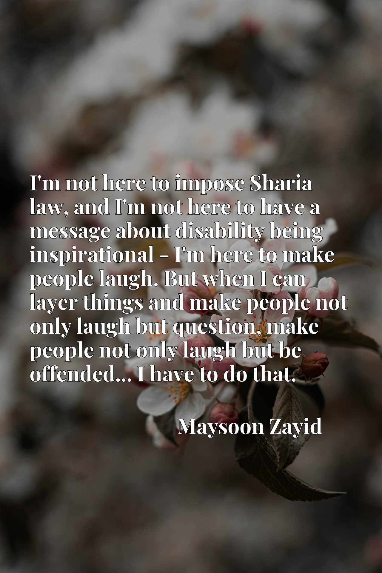 I'm not here to impose Sharia law, and I'm not here to have a message about disability being inspirational - I'm here to make people laugh. But when I can layer things and make people not only laugh but question, make people not only laugh but be offended... I have to do that.