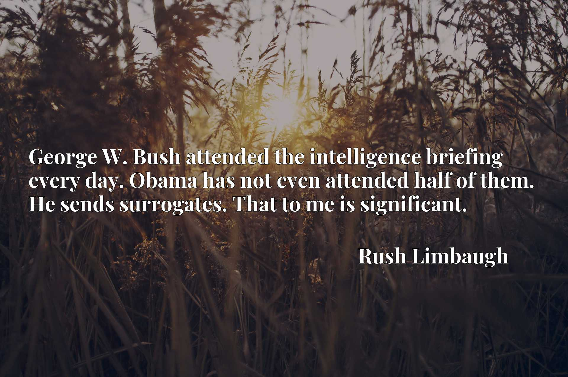 George W. Bush attended the intelligence briefing every day. Obama has not even attended half of them. He sends surrogates. That to me is significant.