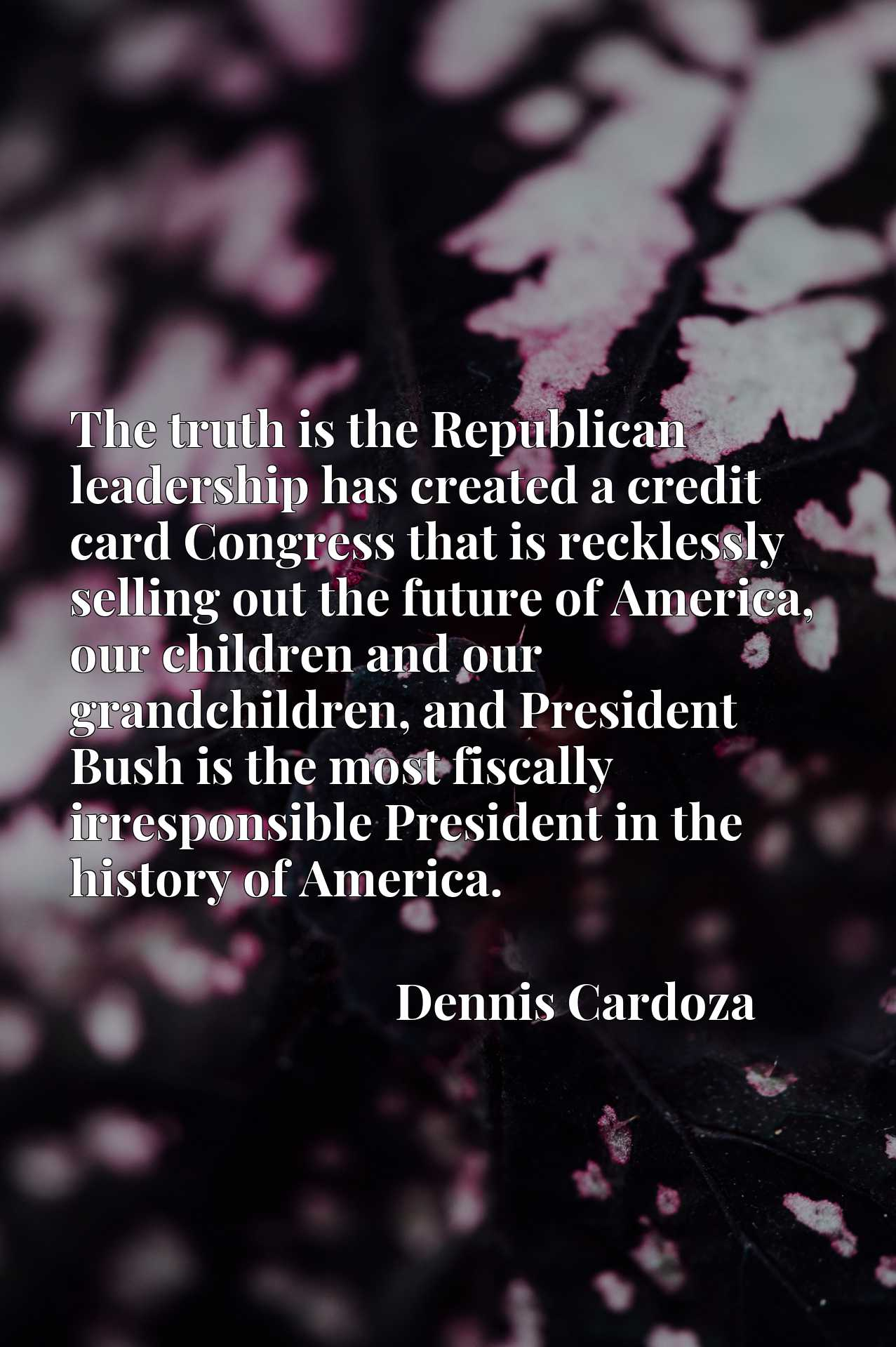 The truth is the Republican leadership has created a credit card Congress that is recklessly selling out the future of America, our children and our grandchildren, and President Bush is the most fiscally irresponsible President in the history of America.