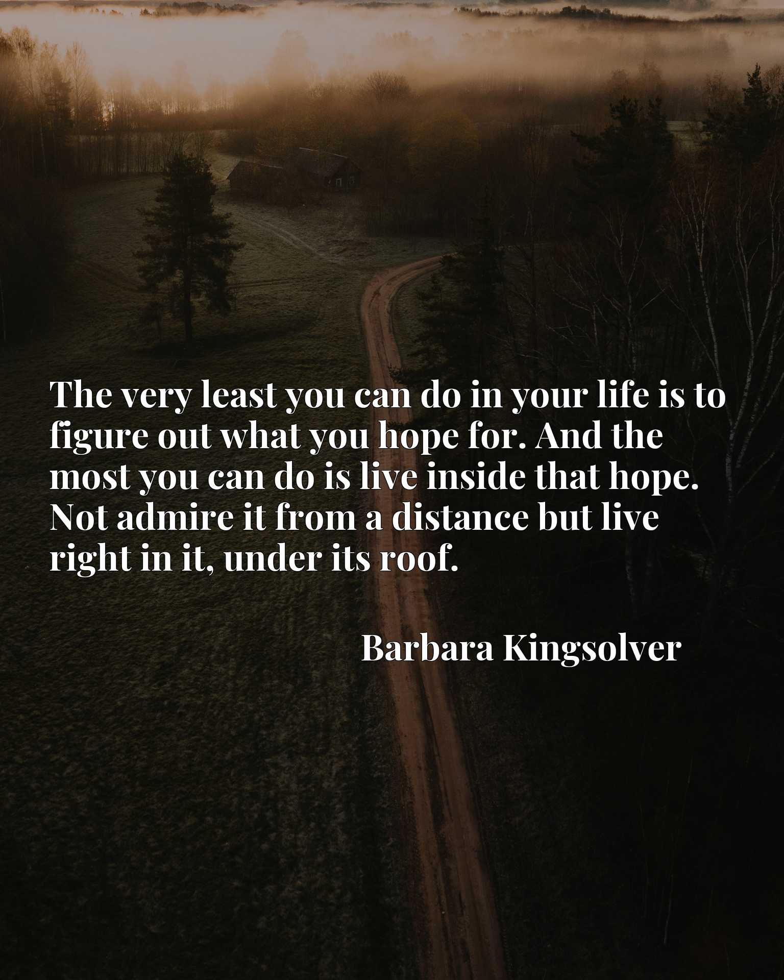 The very least you can do in your life is to figure out what you hope for. And the most you can do is live inside that hope. Not admire it from a distance but live right in it, under its roof.