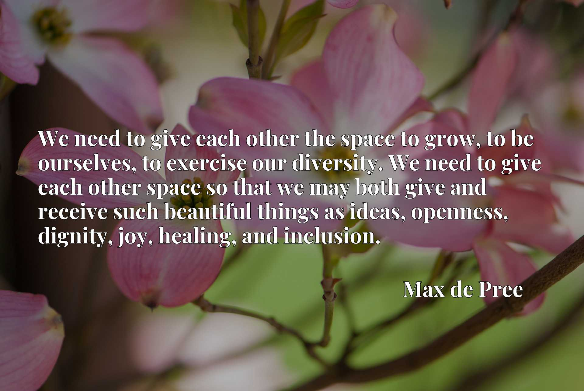 We need to give each other the space to grow, to be ourselves, to exercise our diversity. We need to give each other space so that we may both give and receive such beautiful things as ideas, openness, dignity, joy, healing, and inclusion.