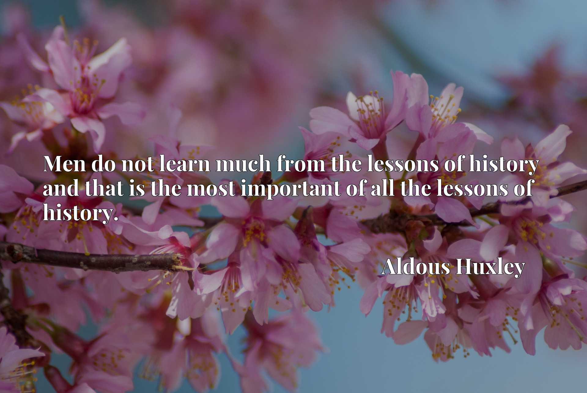 Men do not learn much from the lessons of history and that is the most important of all the lessons of history.