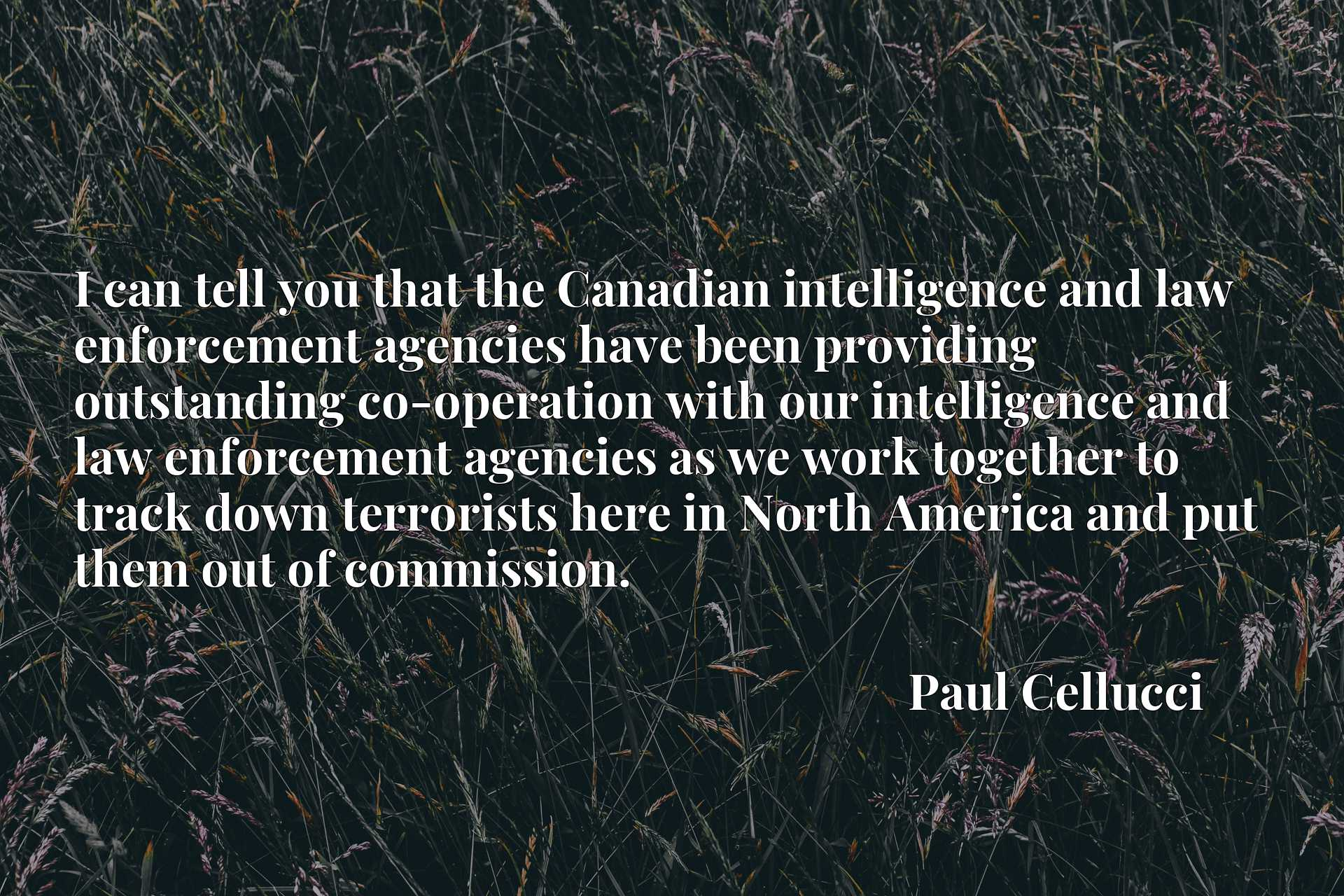I can tell you that the Canadian intelligence and law enforcement agencies have been providing outstanding co-operation with our intelligence and law enforcement agencies as we work together to track down terrorists here in North America and put them out of commission.