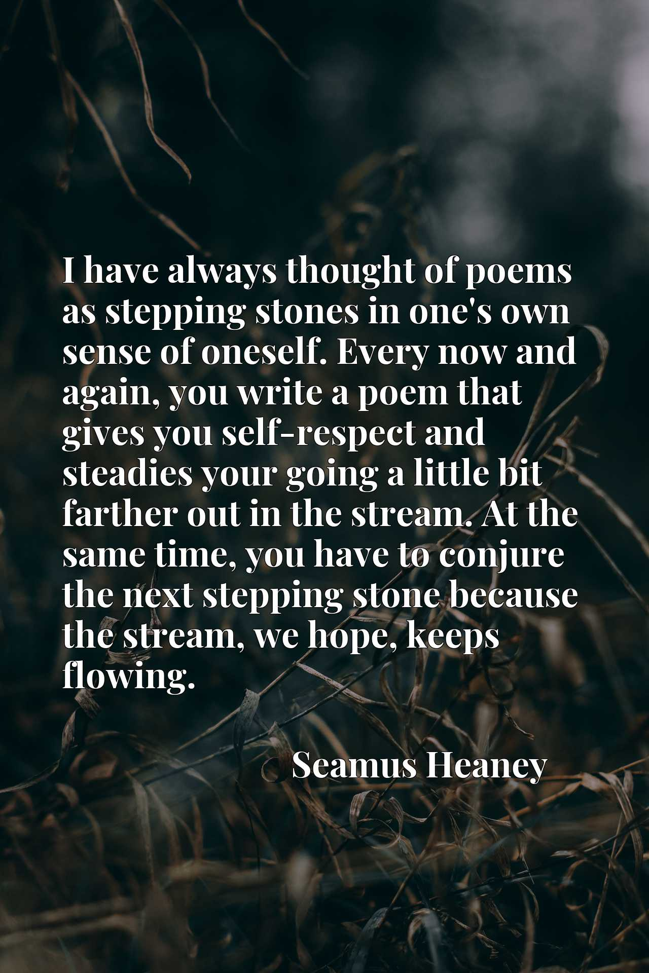 I have always thought of poems as stepping stones in one's own sense of oneself. Every now and again, you write a poem that gives you self-respect and steadies your going a little bit farther out in the stream. At the same time, you have to conjure the next stepping stone because the stream, we hope, keeps flowing.