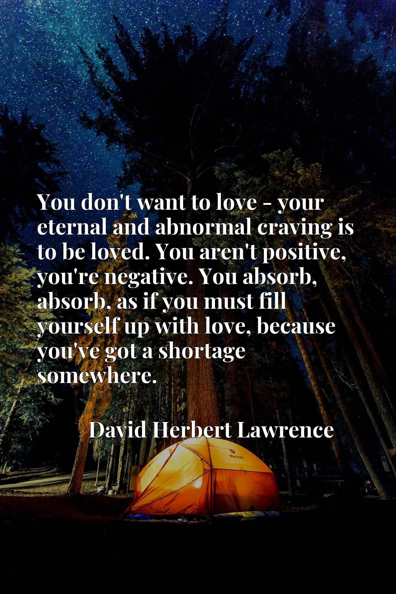 You don't want to love - your eternal and abnormal craving is to be loved. You aren't positive, you're negative. You absorb, absorb, as if you must fill yourself up with love, because you've got a shortage somewhere.