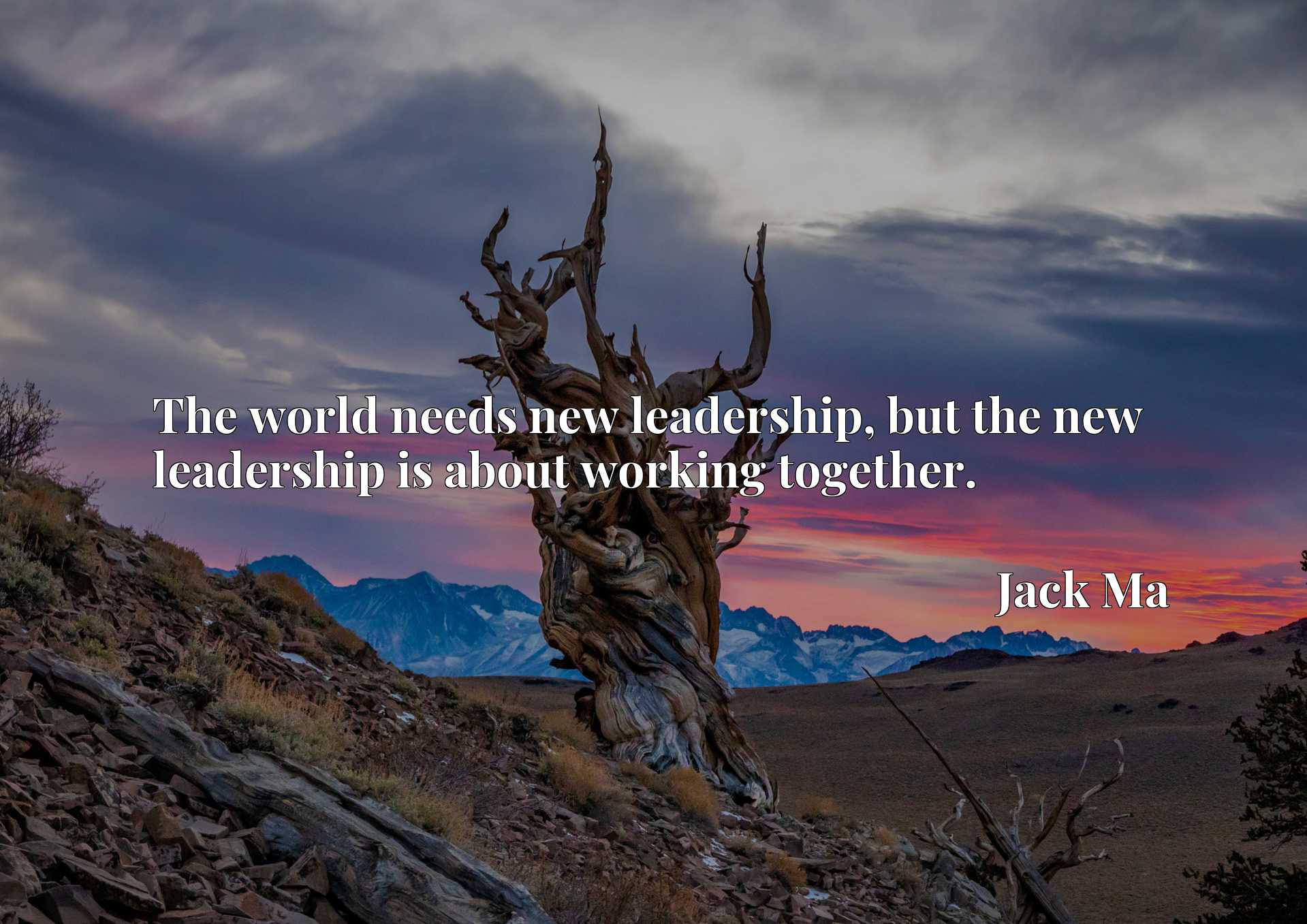 Quote Picture :The world needs new leadership, but the new leadership is about working together.