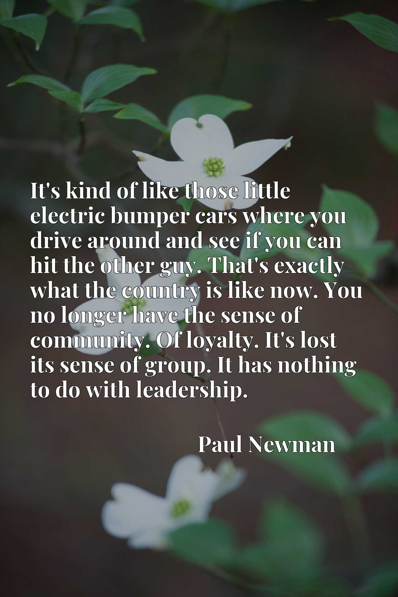 Quote Picture :It's kind of like those little electric bumper cars where you drive around and see if you can hit the other guy. That's exactly what the country is like now. You no longer have the sense of community. Of loyalty. It's lost its sense of group. It has nothing to do with leadership.