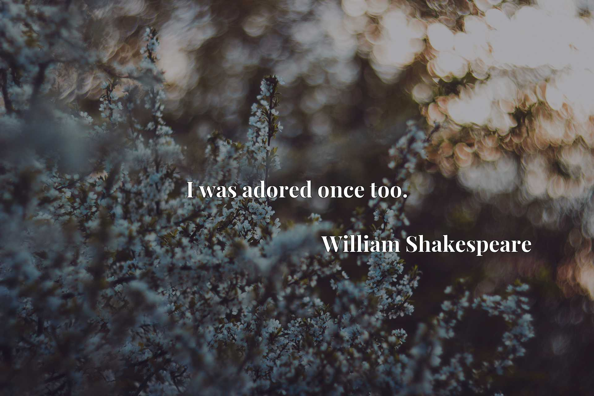 Quote Picture :I was adored once too.