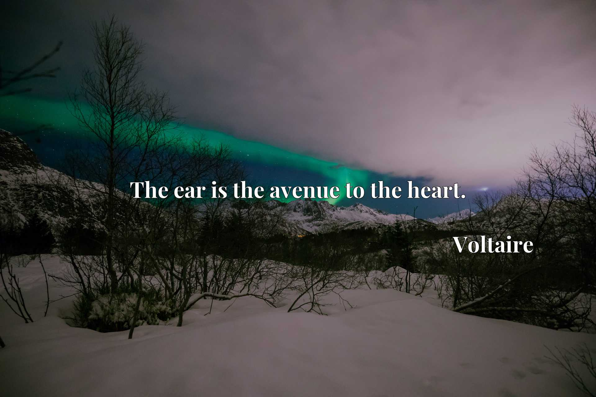 Quote Picture :The ear is the avenue to the heart.