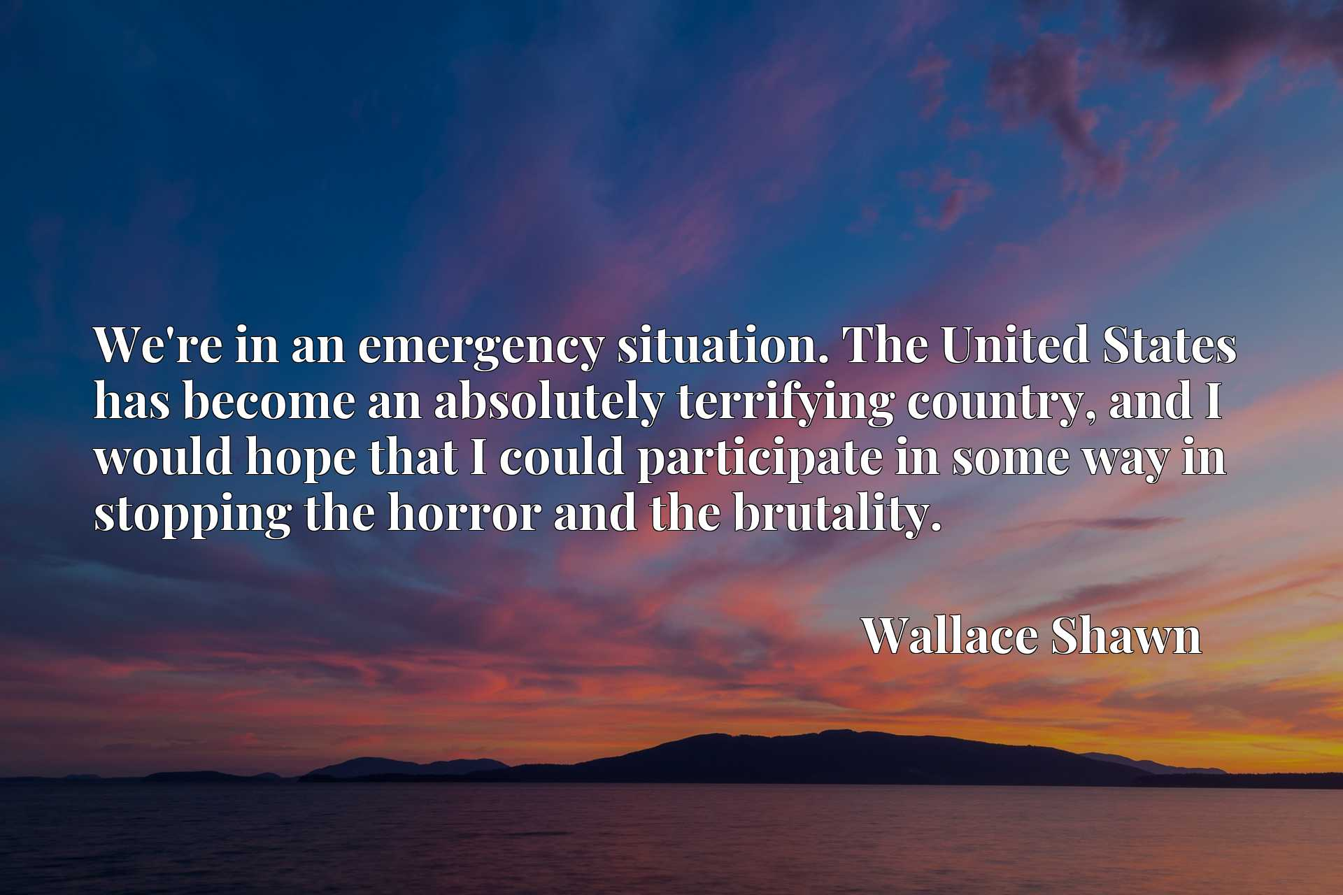 We're in an emergency situation. The United States has become an absolutely terrifying country, and I would hope that I could participate in some way in stopping the horror and the brutality.