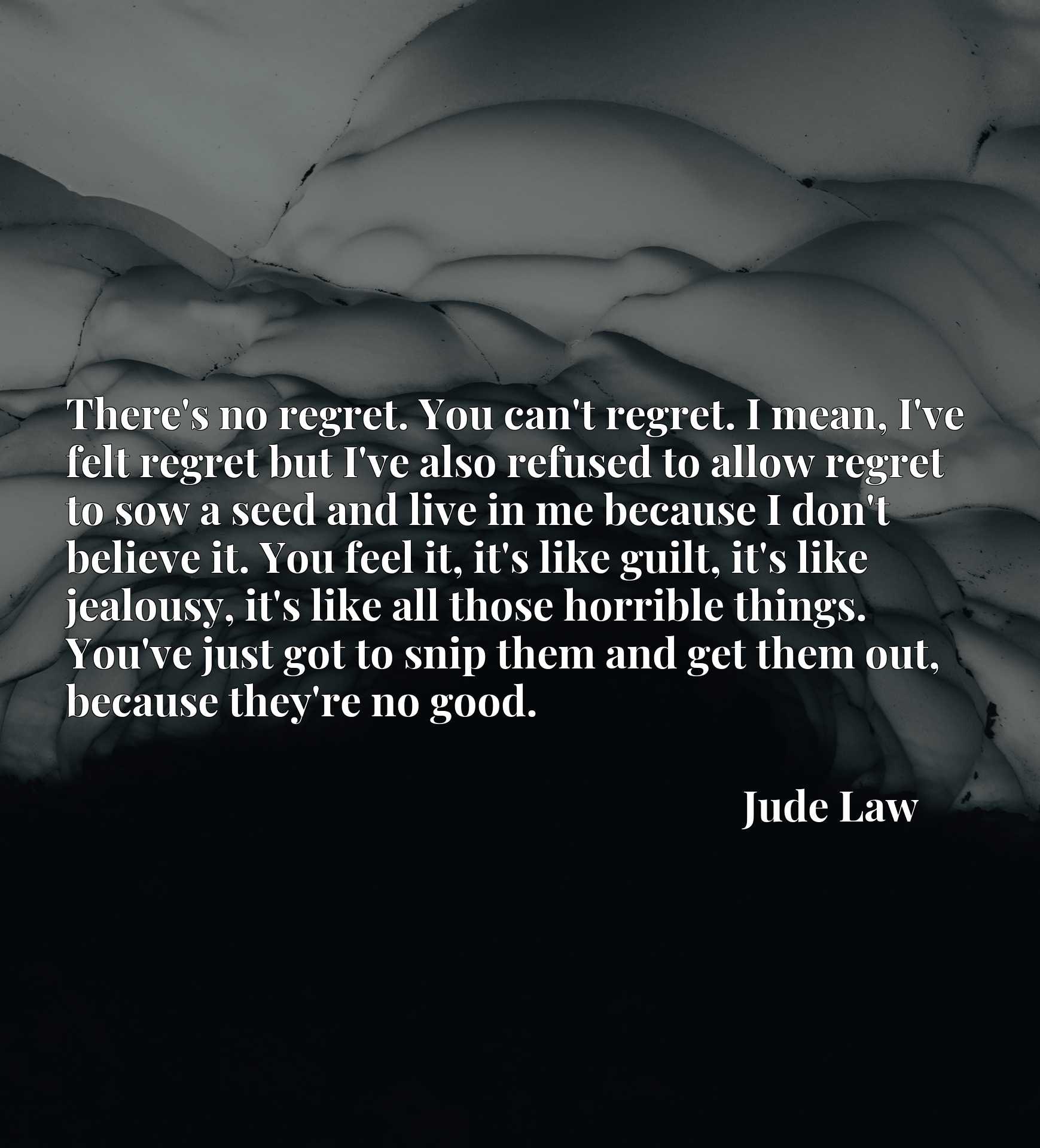 There's no regret. You can't regret. I mean, I've felt regret but I've also refused to allow regret to sow a seed and live in me because I don't believe it. You feel it, it's like guilt, it's like jealousy, it's like all those horrible things. You've just got to snip them and get them out, because they're no good.