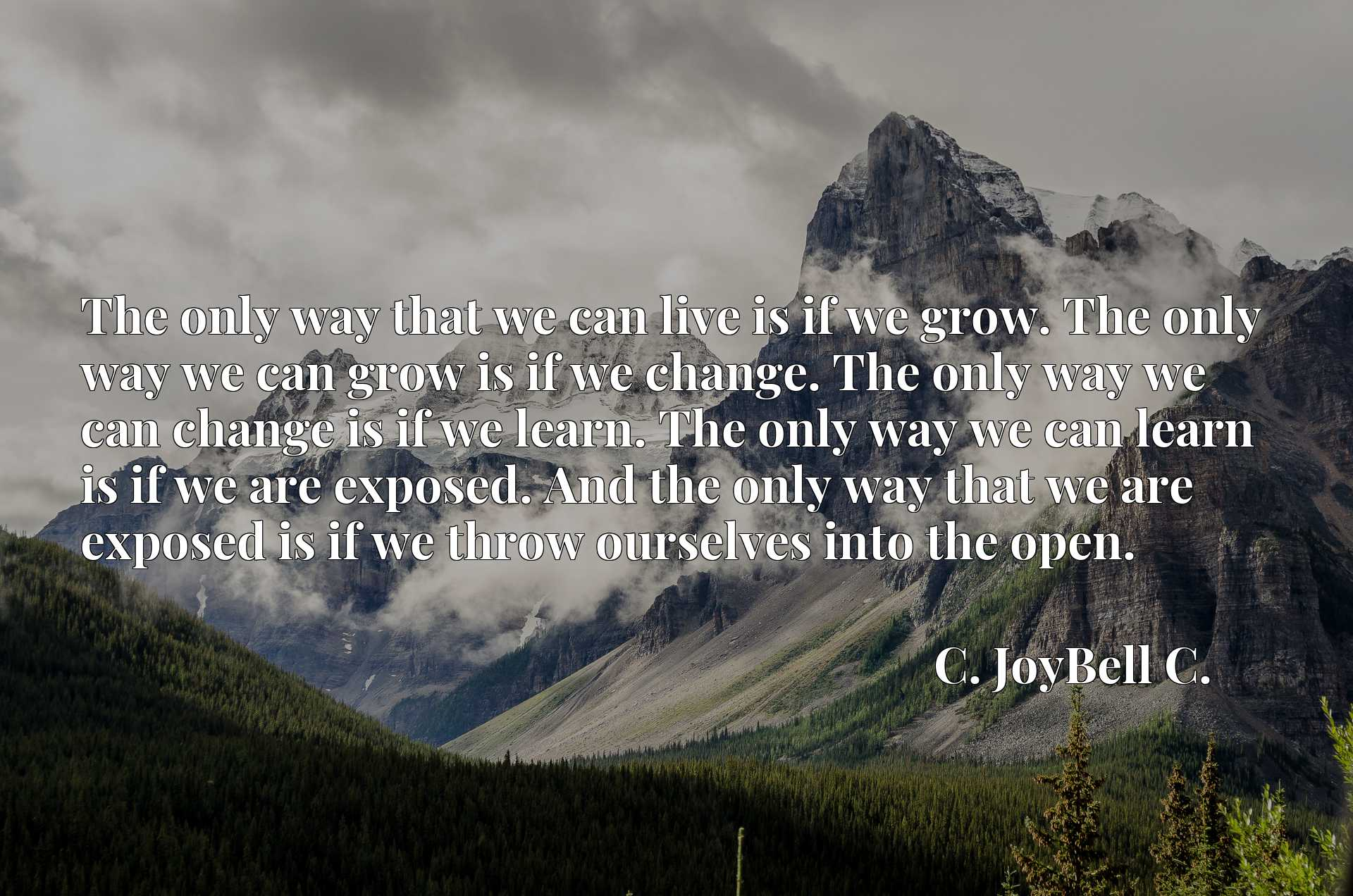 The only way that we can live is if we grow. The only way we can grow is if we change. The only way we can change is if we learn. The only way we can learn is if we are exposed. And the only way that we are exposed is if we throw ourselves into the open.