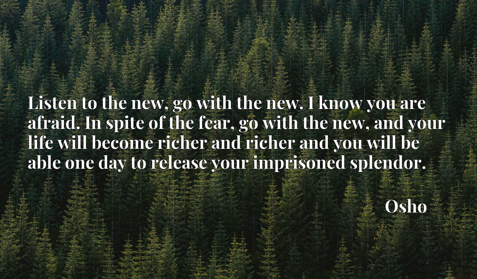 Listen to the new, go with the new. I know you are afraid. In spite of the fear, go with the new, and your life will become richer and richer and you will be able one day to release your imprisoned splendor.
