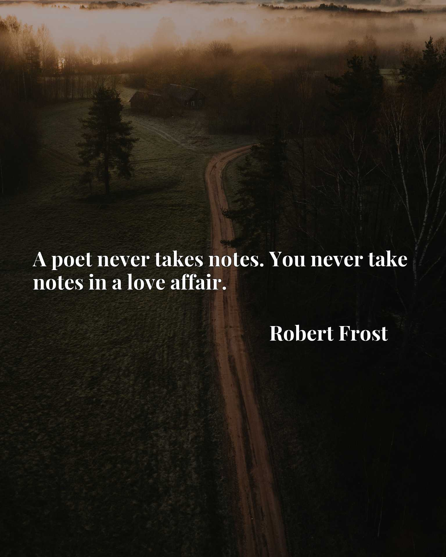 A poet never takes notes. You never take notes in a love affair.