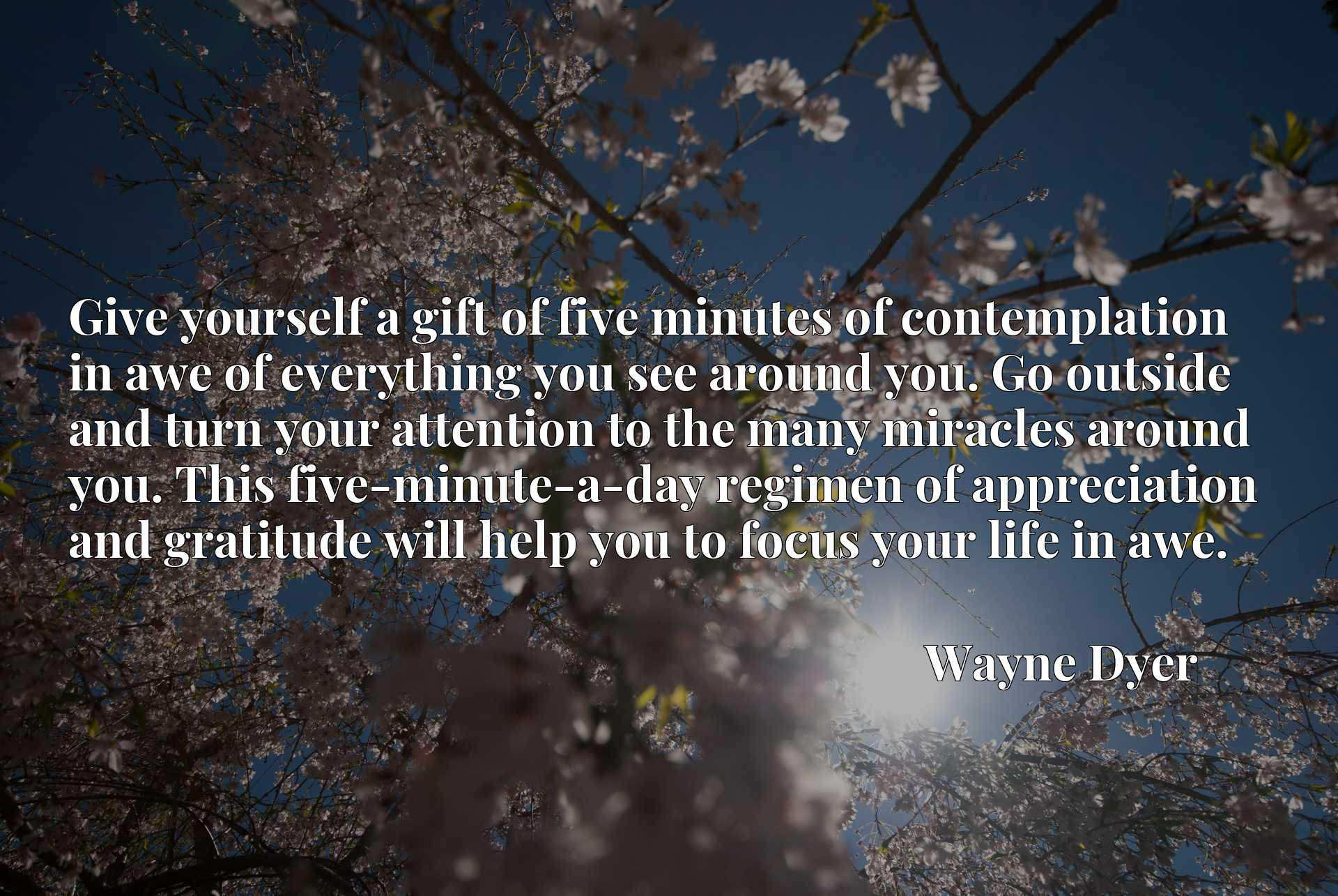Give yourself a gift of five minutes of contemplation in awe of everything you see around you. Go outside and turn your attention to the many miracles around you. This five-minute-a-day regimen of appreciation and gratitude will help you to focus your life in awe.