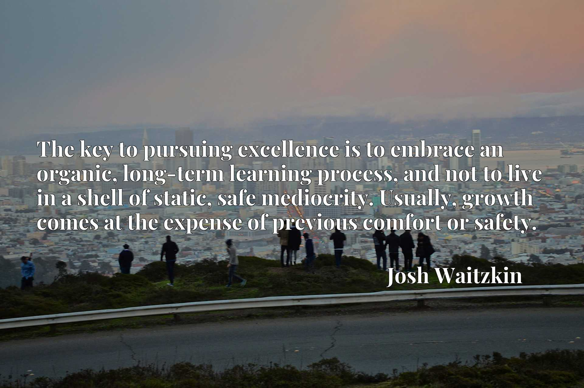The key to pursuing excellence is to embrace an organic, long-term learning process, and not to live in a shell of static, safe mediocrity. Usually, growth comes at the expense of previous comfort or safety.