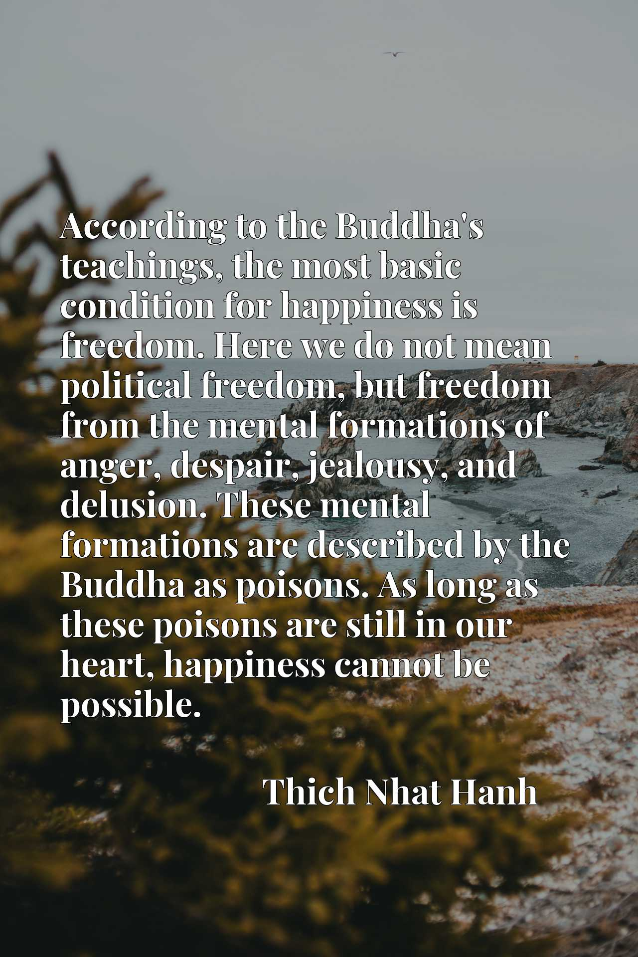 According to the Buddha's teachings, the most basic condition for happiness is freedom. Here we do not mean political freedom, but freedom from the mental formations of anger, despair, jealousy, and delusion. These mental formations are described by the Buddha as poisons. As long as these poisons are still in our heart, happiness cannot be possible.