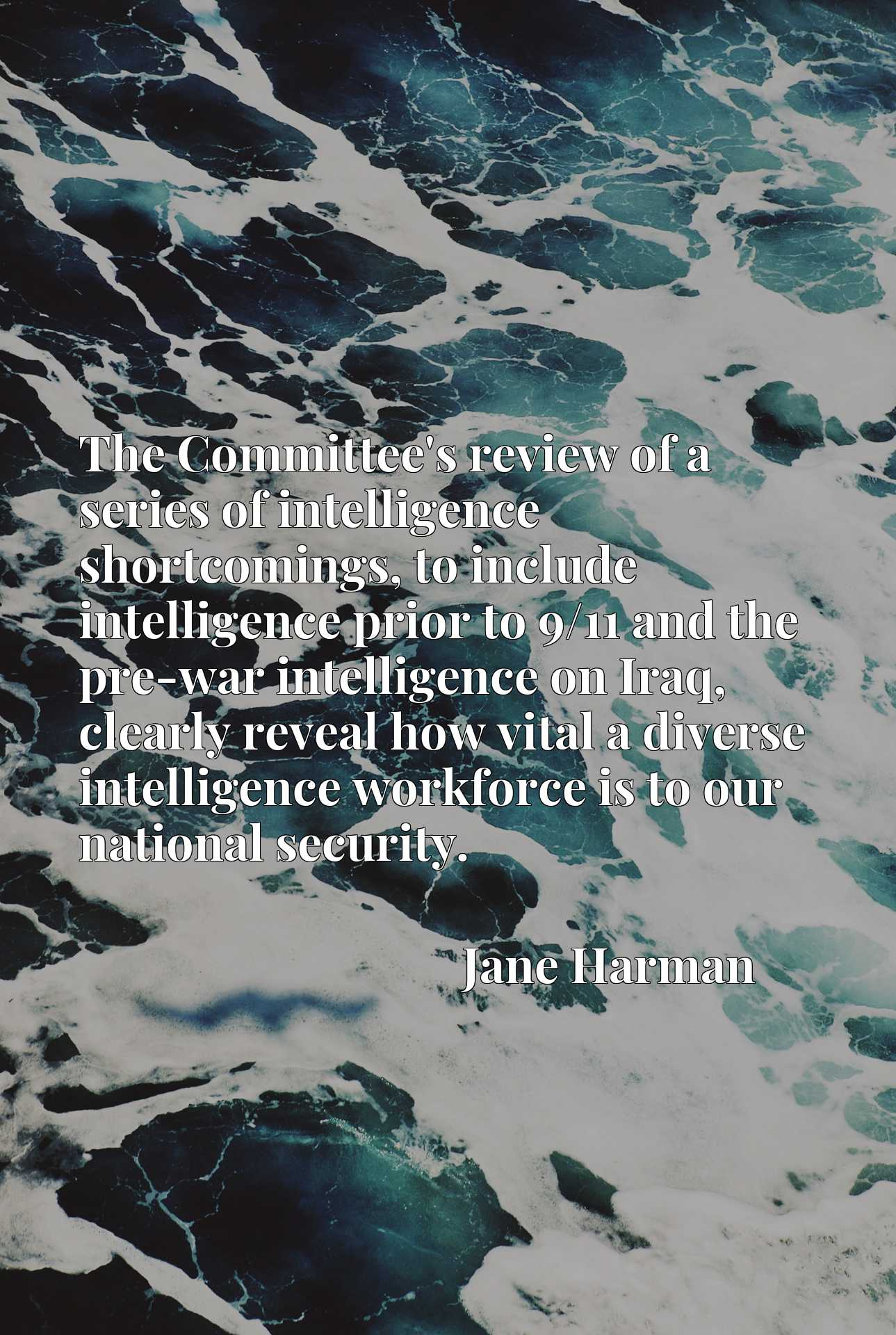 The Committee's review of a series of intelligence shortcomings, to include intelligence prior to 9/11 and the pre-war intelligence on Iraq, clearly reveal how vital a diverse intelligence workforce is to our national security.