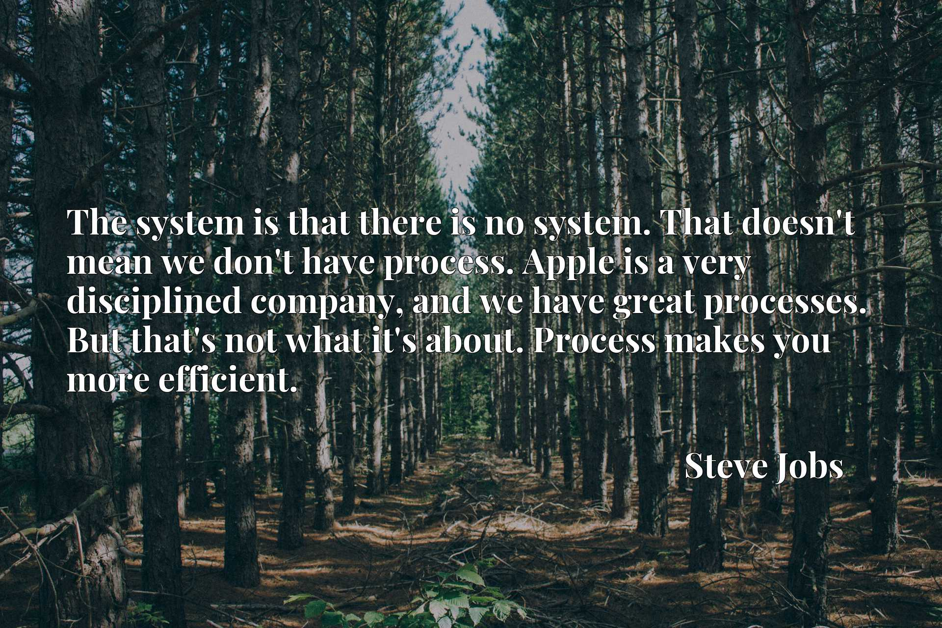 The system is that there is no system. That doesn't mean we don't have process. Apple is a very disciplined company, and we have great processes. But that's not what it's about. Process makes you more efficient.