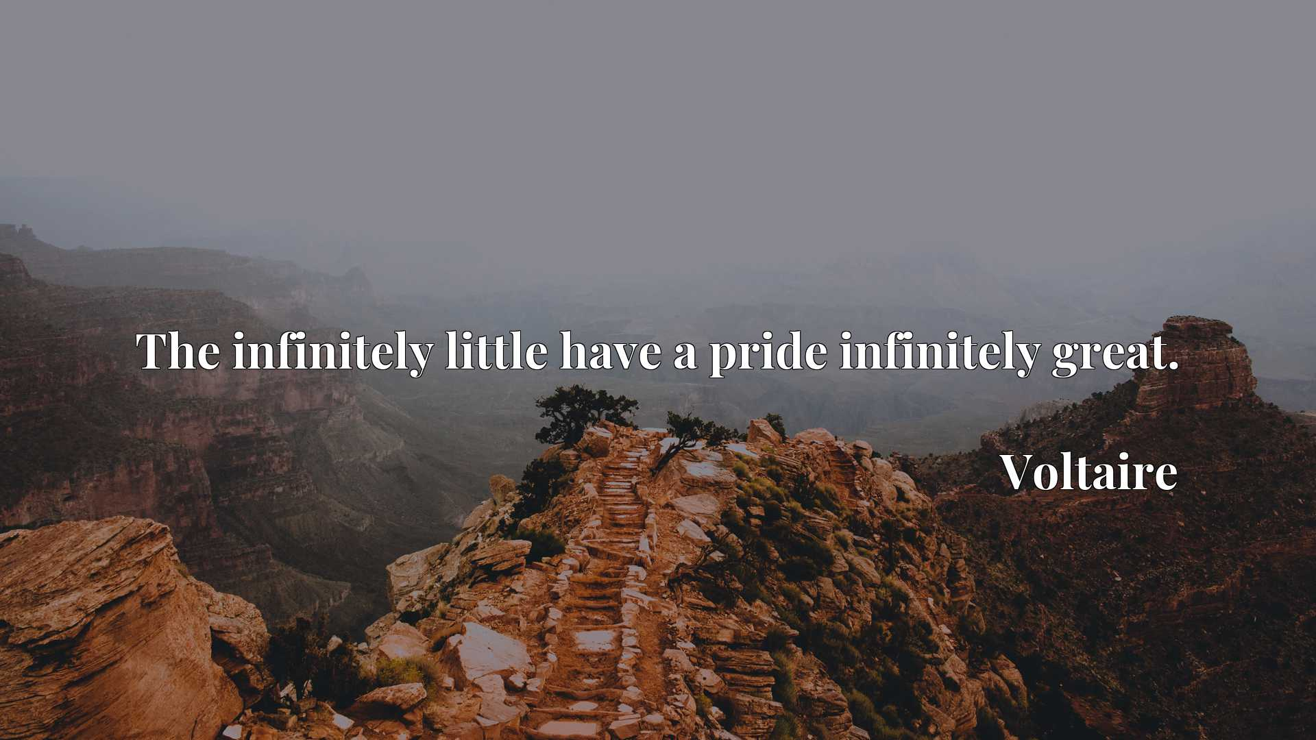The infinitely little have a pride infinitely great.